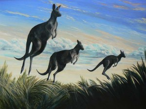 """SAILING ON A SEA OF GRASS"" (Eastern Grey Kangaroos)"